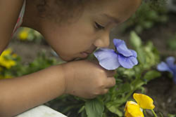 Girl smelling a purple flower in our Healing Garden.